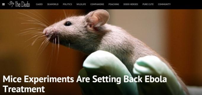 Mice Experiment Ebola