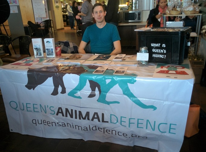 One of our members at our table at Kingston VegFest.