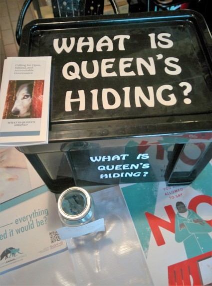 qad-vegfest-what-is-queens-hiding