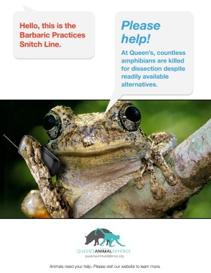 barbaric-practices-snitch-line-amphibians2